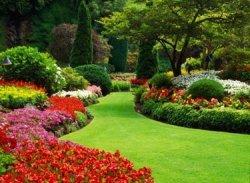 Ваш красивый сад