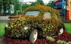Ландшафтное проектирование и озеленение