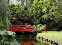 Водоемы и мостики в ландшафтном дизайне
