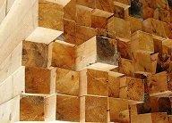 Характеристики популярных древесных пород