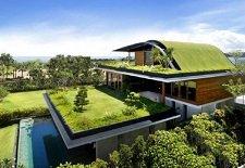 Как озеленить крышу