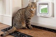 Как делается дверца для кошки или собаки